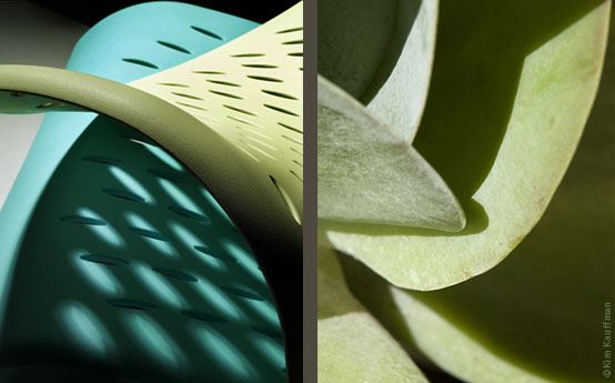 Product photographer highlights curves, lines and textures of a plastic chair compared to the botanical photo of the leaves of a Kalanchoe in these abstract product photographs created by Kim Kauffman.